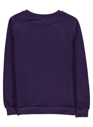 Fresh Company Sweatshirt Mor